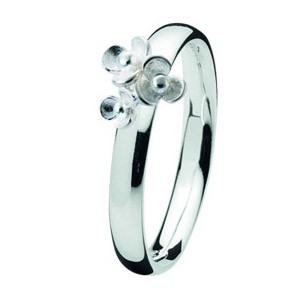 Spinning ring 709-04 Flora