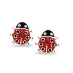 Bellini oorstekers lieveheersbeestje